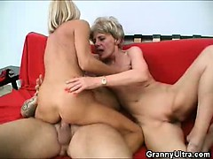 cock-grinding-grannies-in-a-threesome