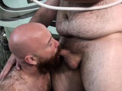 camping-chubby-bears-suck-and-breed-outdoor