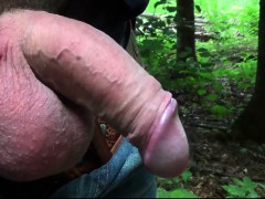 several-mosquitos-on-swollen-dick