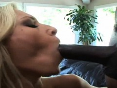 brookes tits bounce as she gets pounded