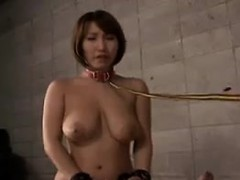 submissive-asian-slut-with-big-natural-tits-deepthroats-a-s