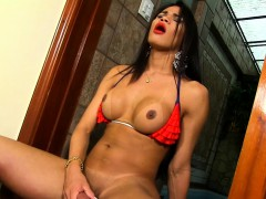 Shemale Erika Lee Plays With Herself