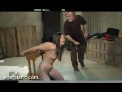 lessons-in-obedience-part-2