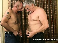 Silverdaddy Destroys His Mature Friends Ass