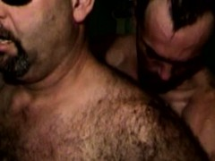 Hairy Mature Bears Playing With Cock
