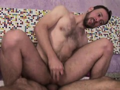 Gay Bear's Being Fucked In Ass