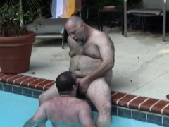 polar-bear-cocksucked-in-the-pool