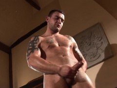 buff-euro-stud-strips-and-strokes-hard-dong