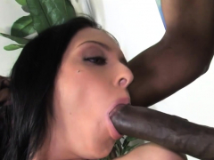 stephanie cane nails huge black cock in front of cuckold husband