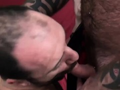 bearfilms-tight-bottom-frankie-rogers-humped-by-daddy-bear